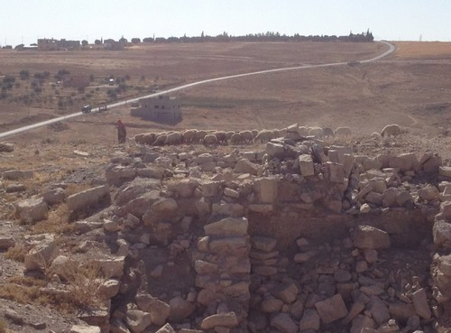 A shepherd tending his sheep amongst the ruins at Dibon